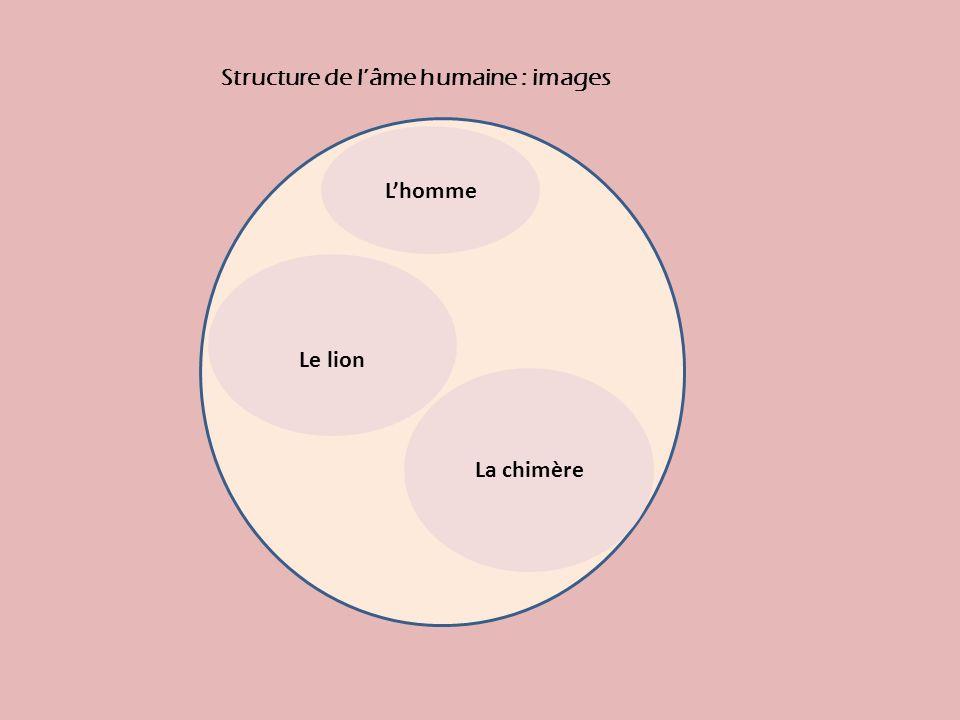 Structure de l'âme humaine : images