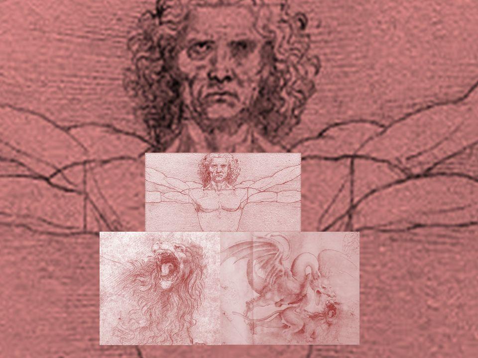 Homme de Vitruve, par Vinci / esquisse d'un lion hurlant, par de Vinci / dragon et lion, Vinci