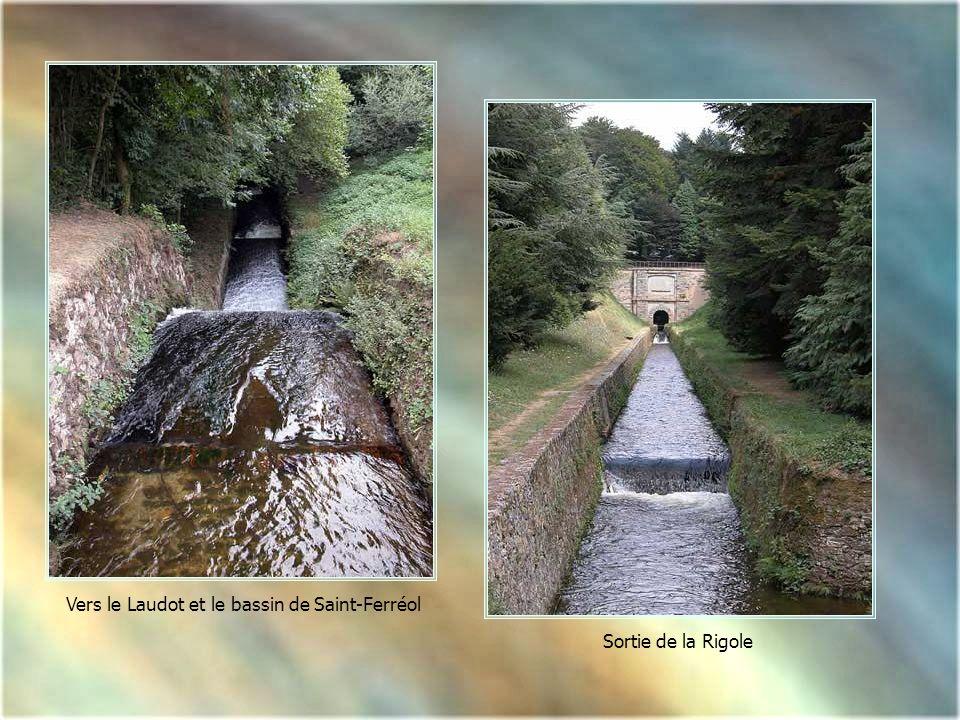 Vers le Laudot et le bassin de Saint-Ferréol