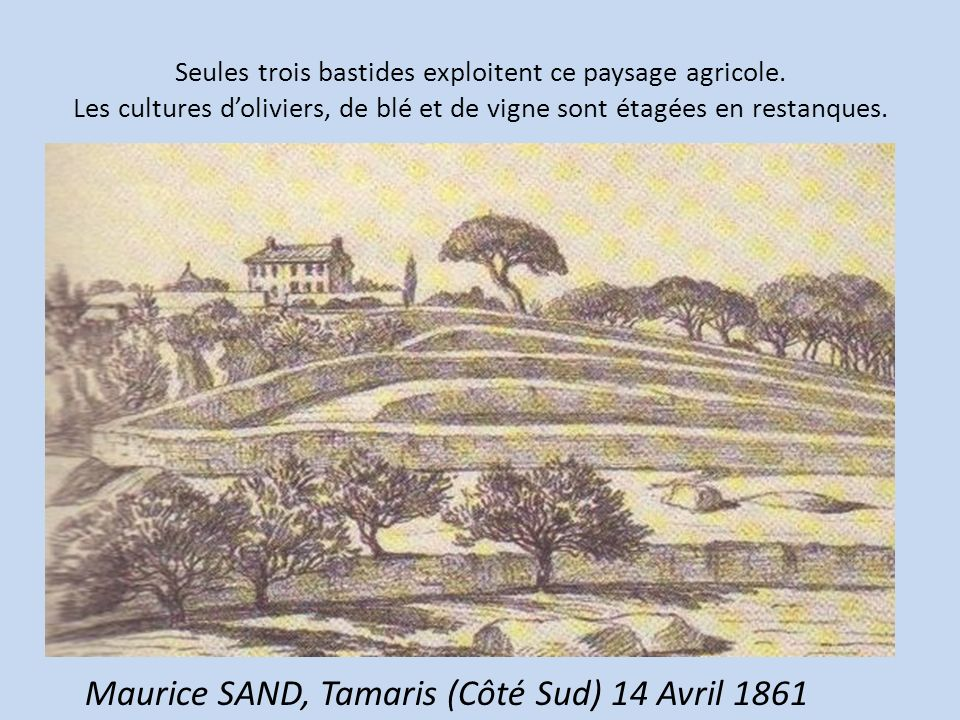 Maurice SAND, Tamaris (Côté Sud) 14 Avril 1861