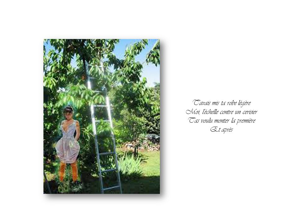 T avais mis ta robe légère Moi, l échelle contre un cerisier
