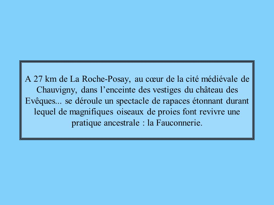A 27 km de La Roche-Posay, au cœur de la cité médiévale de Chauvigny, dans l'enceinte des vestiges du château des Evêques...