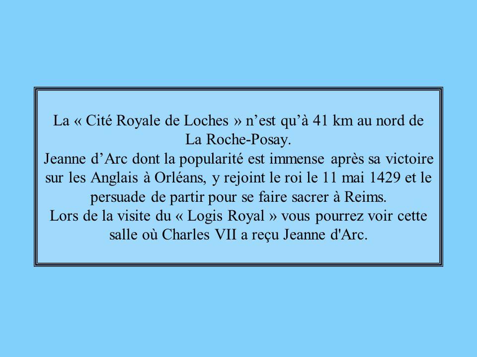 La « Cité Royale de Loches » n'est qu'à 41 km au nord de La Roche-Posay.