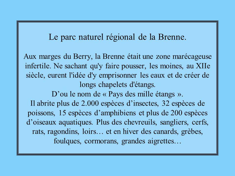 Le parc naturel régional de la Brenne
