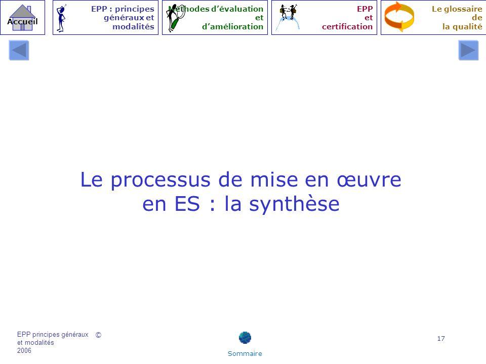 Le processus de mise en œuvre en ES : la synthèse