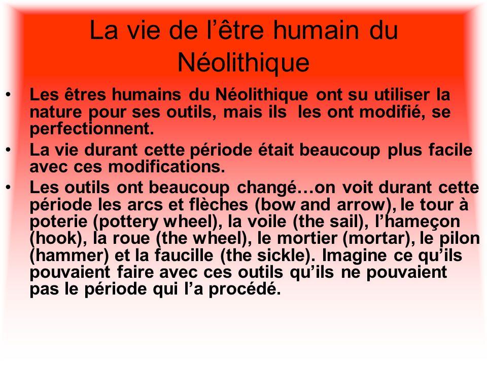 La vie de l'être humain du Néolithique