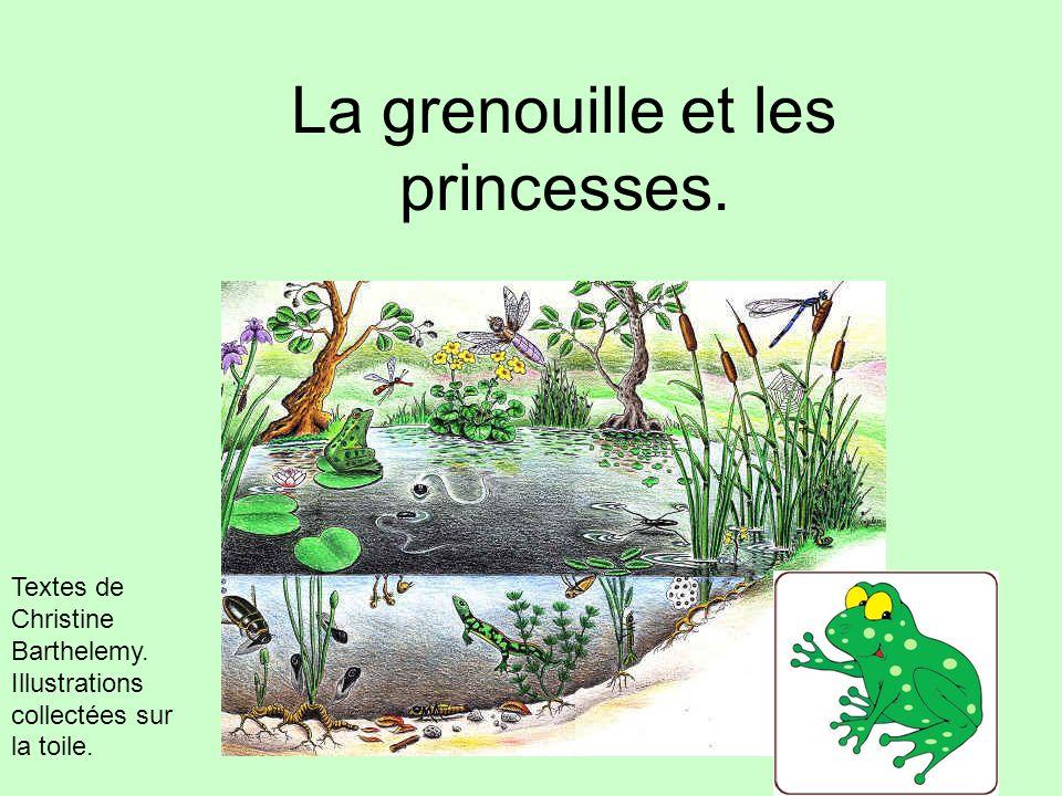 La grenouille et les princesses.