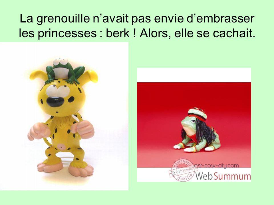 La grenouille n'avait pas envie d'embrasser les princesses : berk