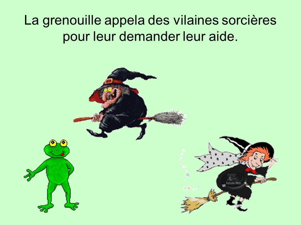 La grenouille appela des vilaines sorcières pour leur demander leur aide.