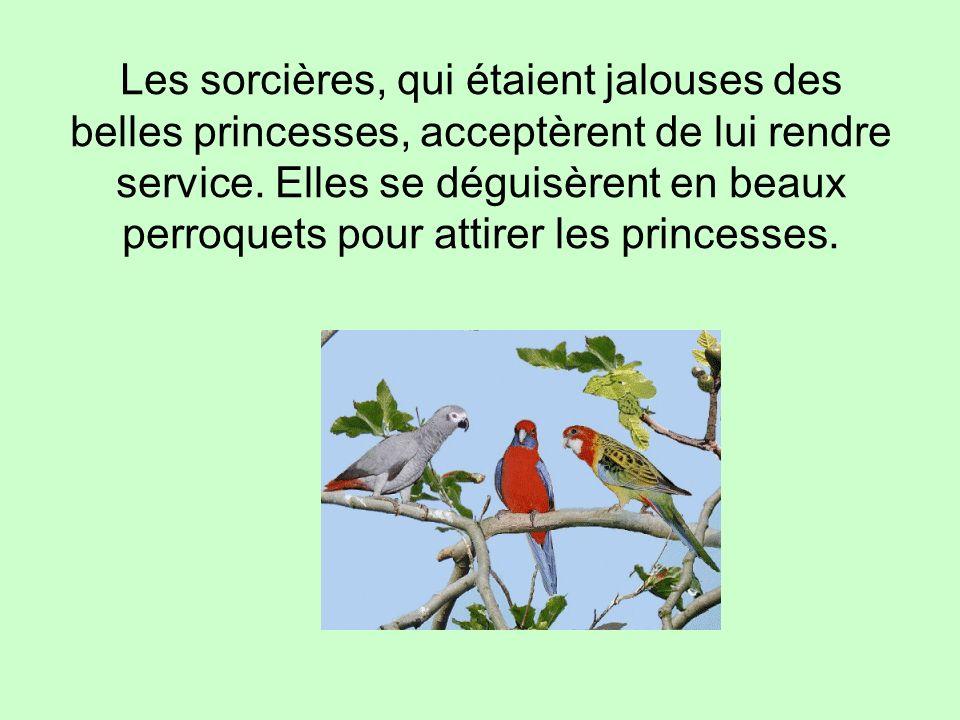 Les sorcières, qui étaient jalouses des belles princesses, acceptèrent de lui rendre service.