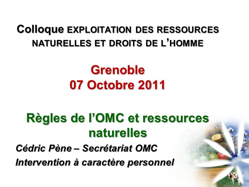 Règles de l'OMC et ressources naturelles