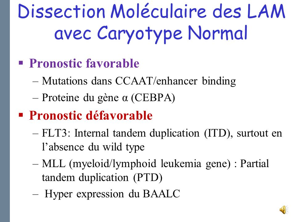 Dissection Moléculaire des LAM avec Caryotype Normal