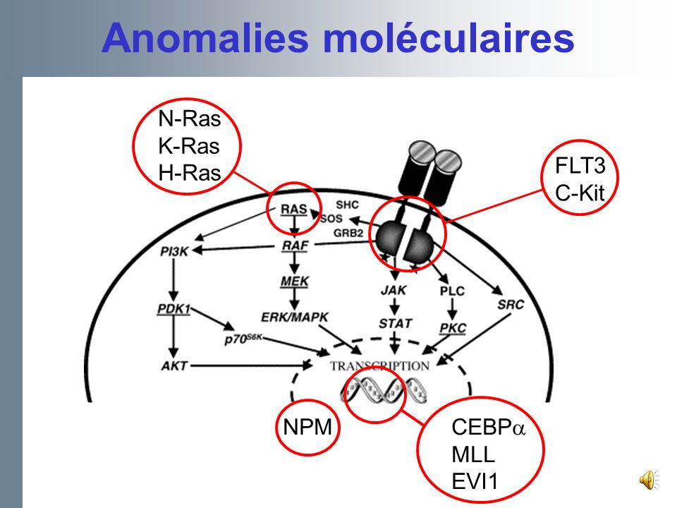 Anomalies moléculaires