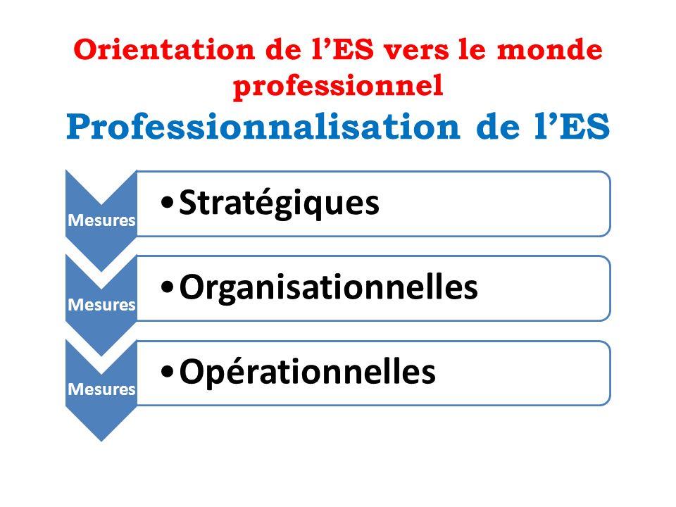 Orientation de l'ES vers le monde professionnel Professionnalisation de l'ES