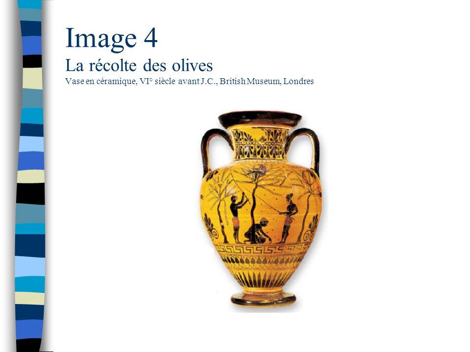 Image 4 La récolte des olives Vase en céramique, VI° siècle avant J. C