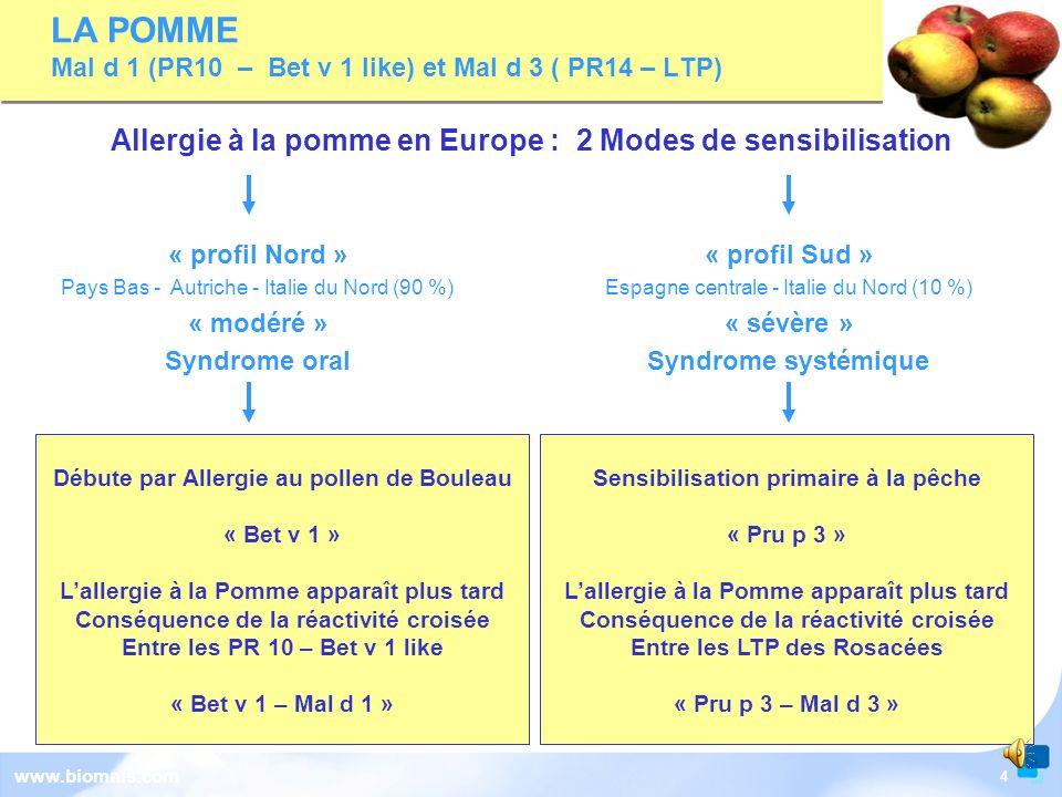 LA POMME Mal d 1 (PR10 – Bet v 1 like) et Mal d 3 ( PR14 – LTP)