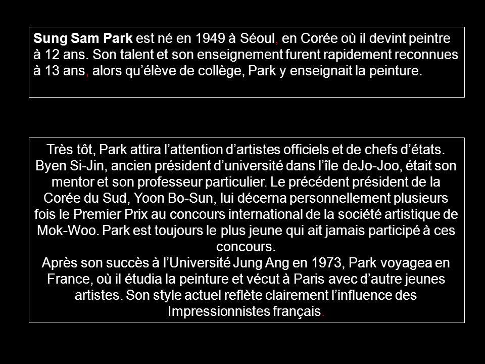 Sung Sam Park est né en 1949 à Séoul, en Corée où il devint peintre à 12 ans. Son talent et son enseignement furent rapidement reconnues à 13 ans, alors qu'élève de collège, Park y enseignait la peinture.