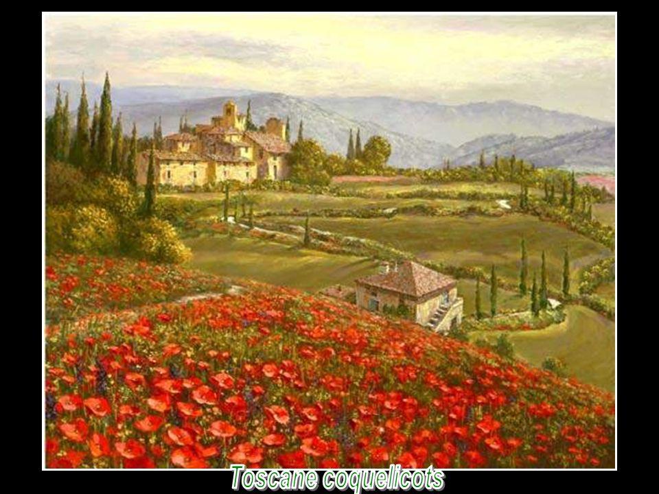 Toscane coquelicots