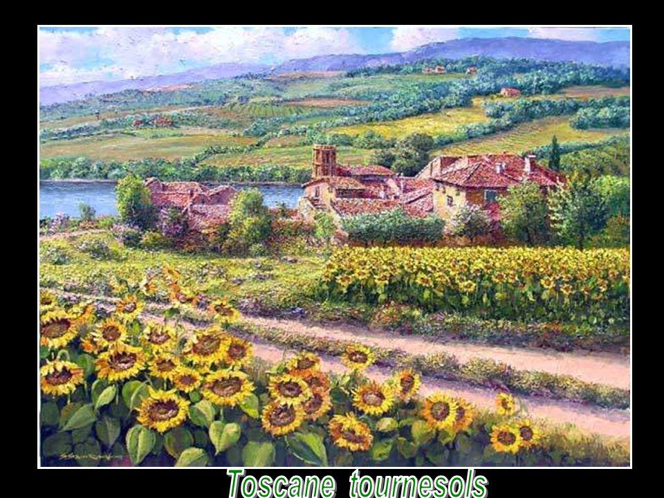 Toscane tournesols