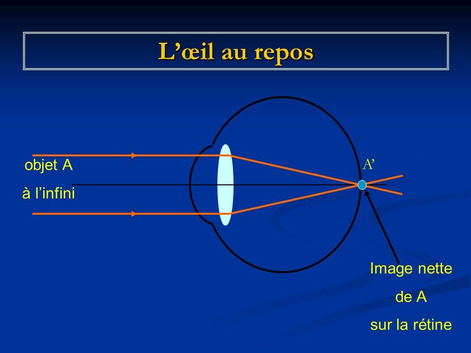 L'œil au repos objet A à l'infini Image nette de A sur la rétine A'