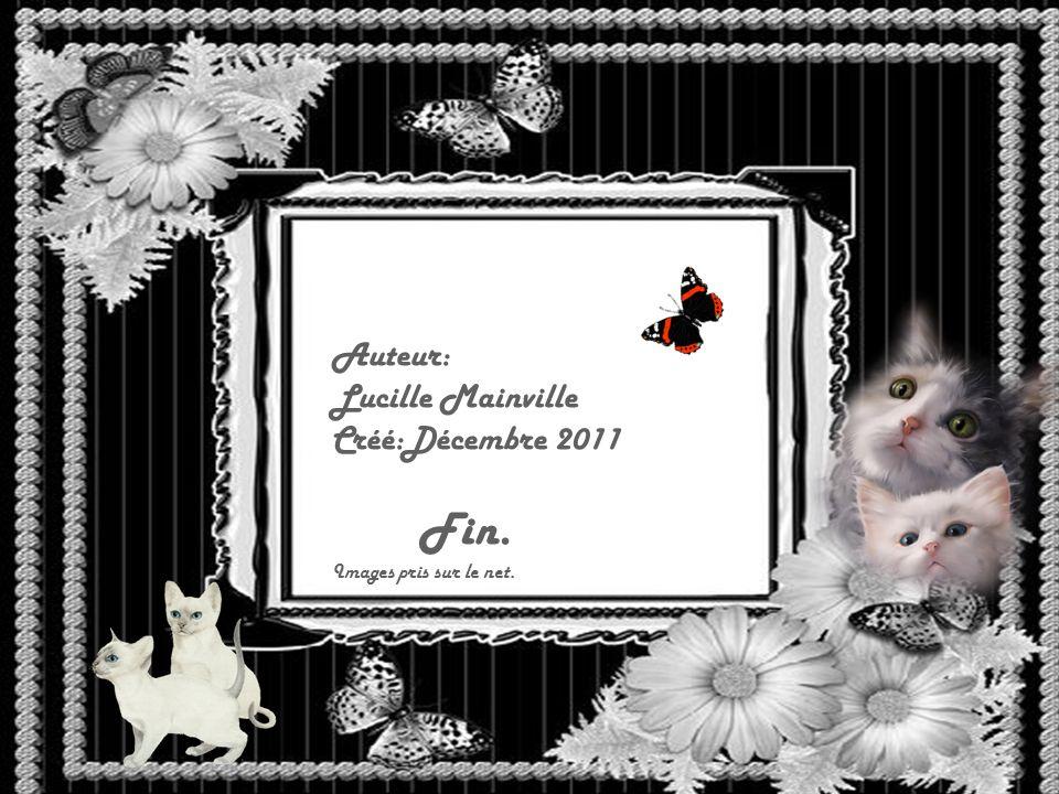 Auteur: Lucille Mainville Créé:Décembre 2011 Fin.