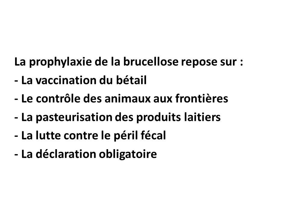 La prophylaxie de la brucellose repose sur : - La vaccination du bétail. - Le contrôle des animaux aux frontières.