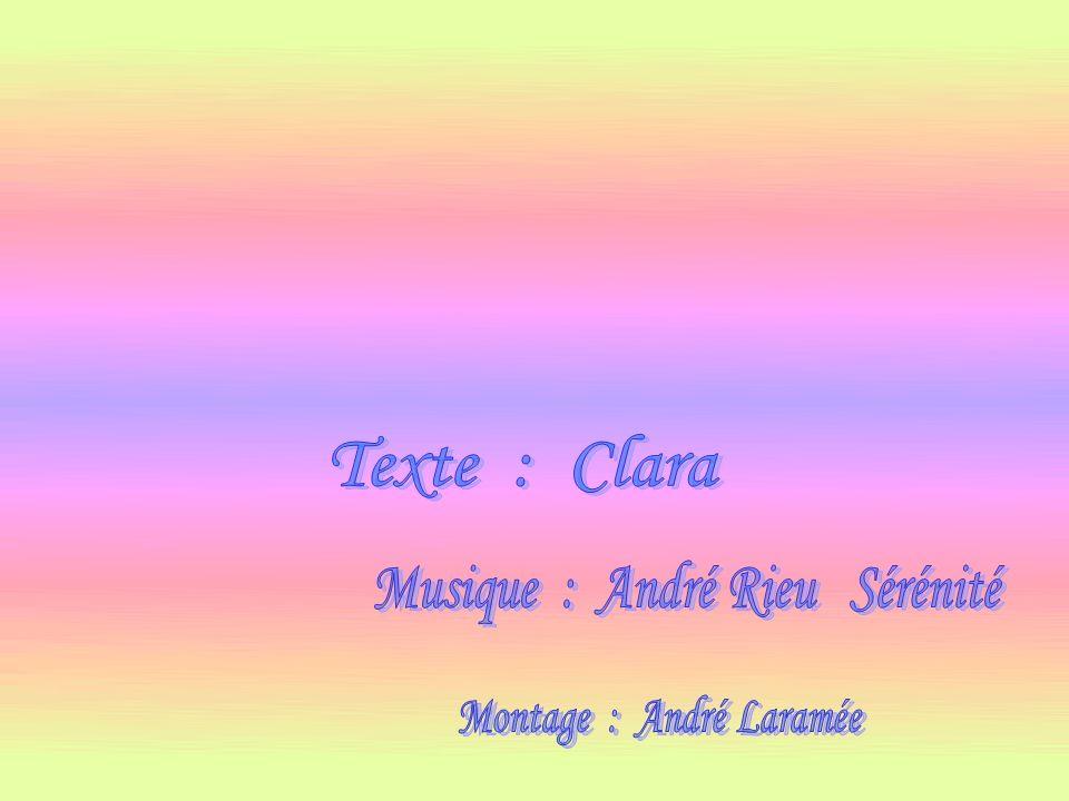 Musique : André Rieu Sérénité