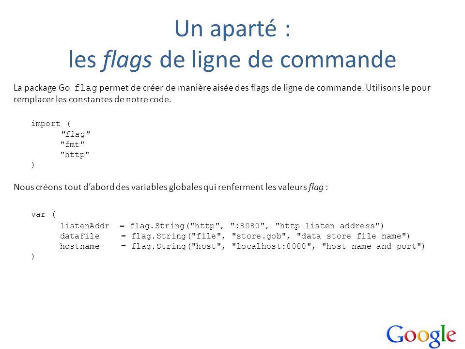 Un aparté : les flags de ligne de commande