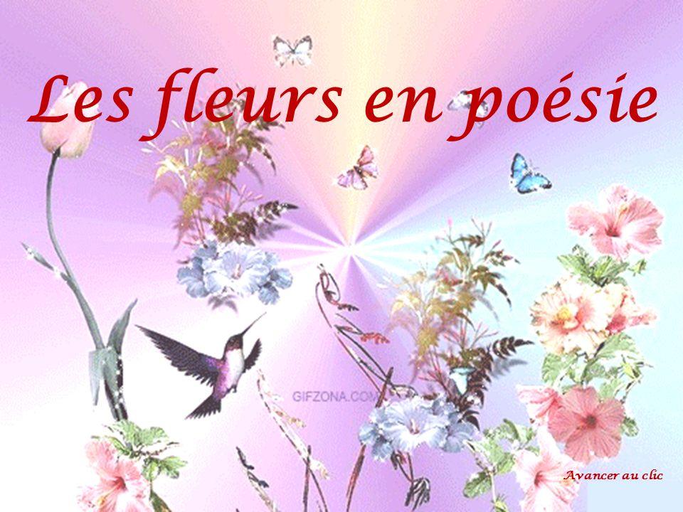 Les fleurs en po sie avancer au clic ppt video online for Fleurs online