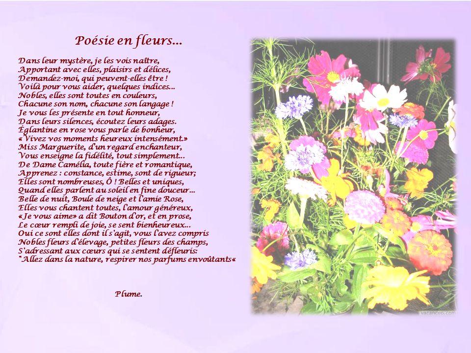 Poésie en fleurs...