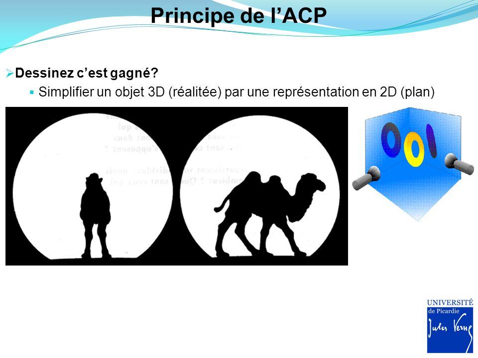 Principe de l'ACP Dessinez c'est gagné