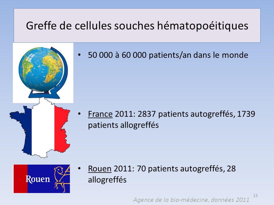 Greffe de cellules souches hématopoéitiques