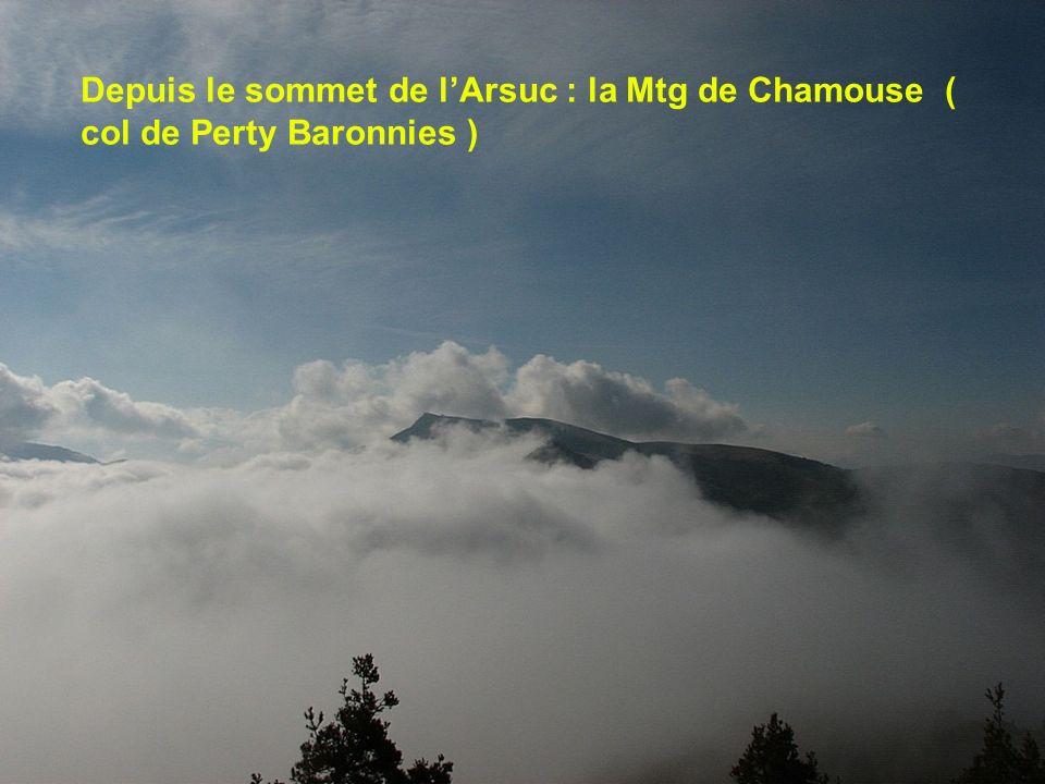 Depuis le sommet de l'Arsuc : la Mtg de Chamouse ( col de Perty Baronnies )