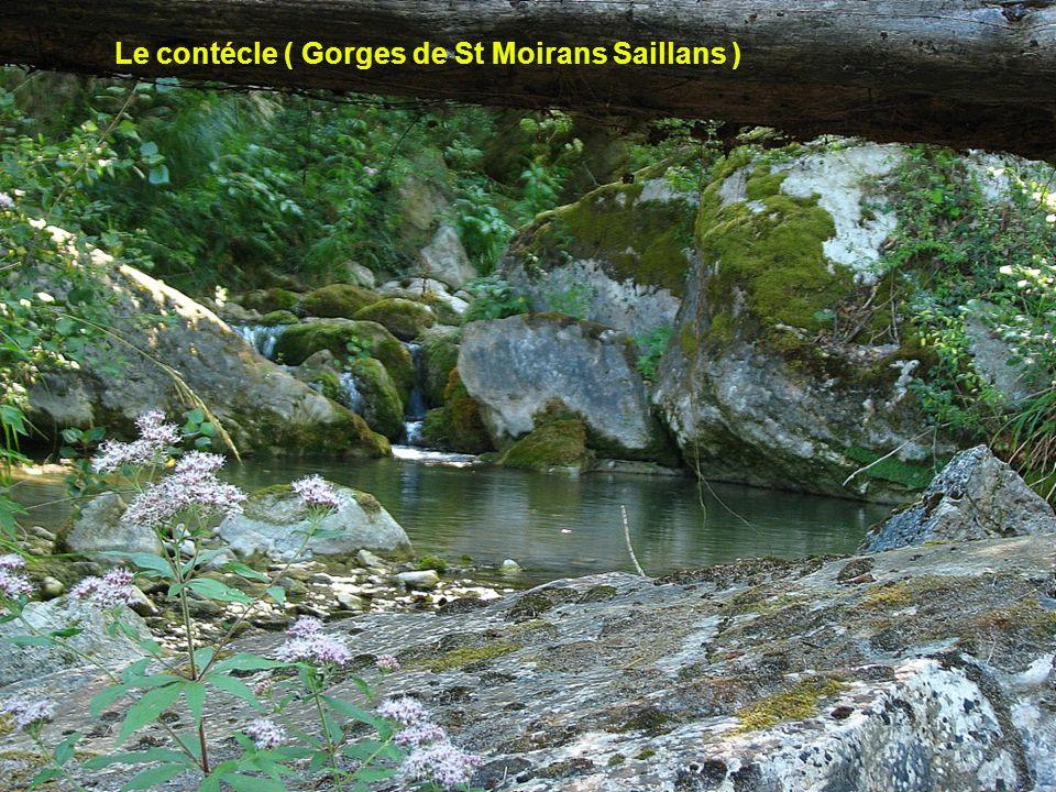 Le contécle ( Gorges de St Moirans Saillans )
