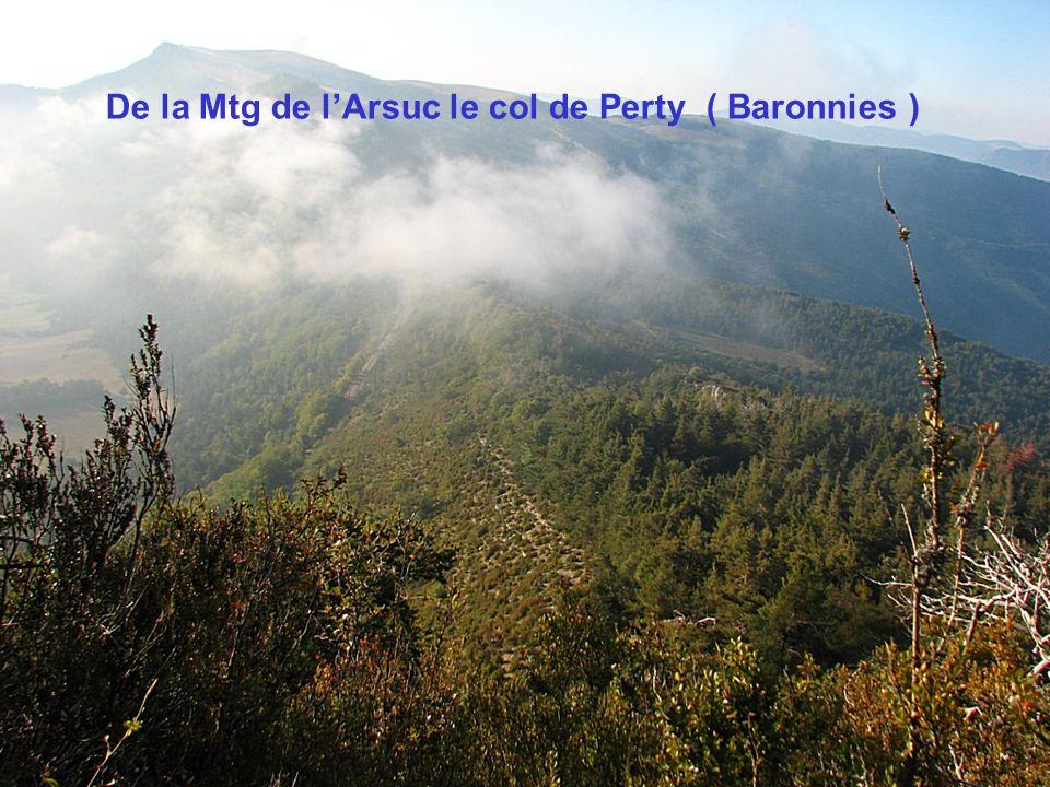De la Mtg de l'Arsuc le col de Perty ( Baronnies )