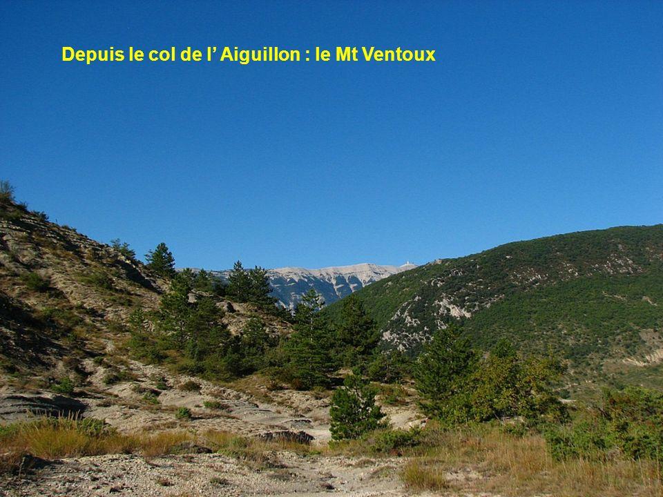 Depuis le col de l' Aiguillon : le Mt Ventoux