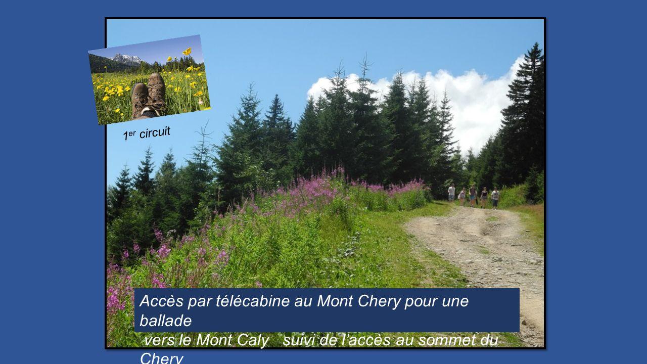 Accès par télécabine au Mont Chery pour une ballade