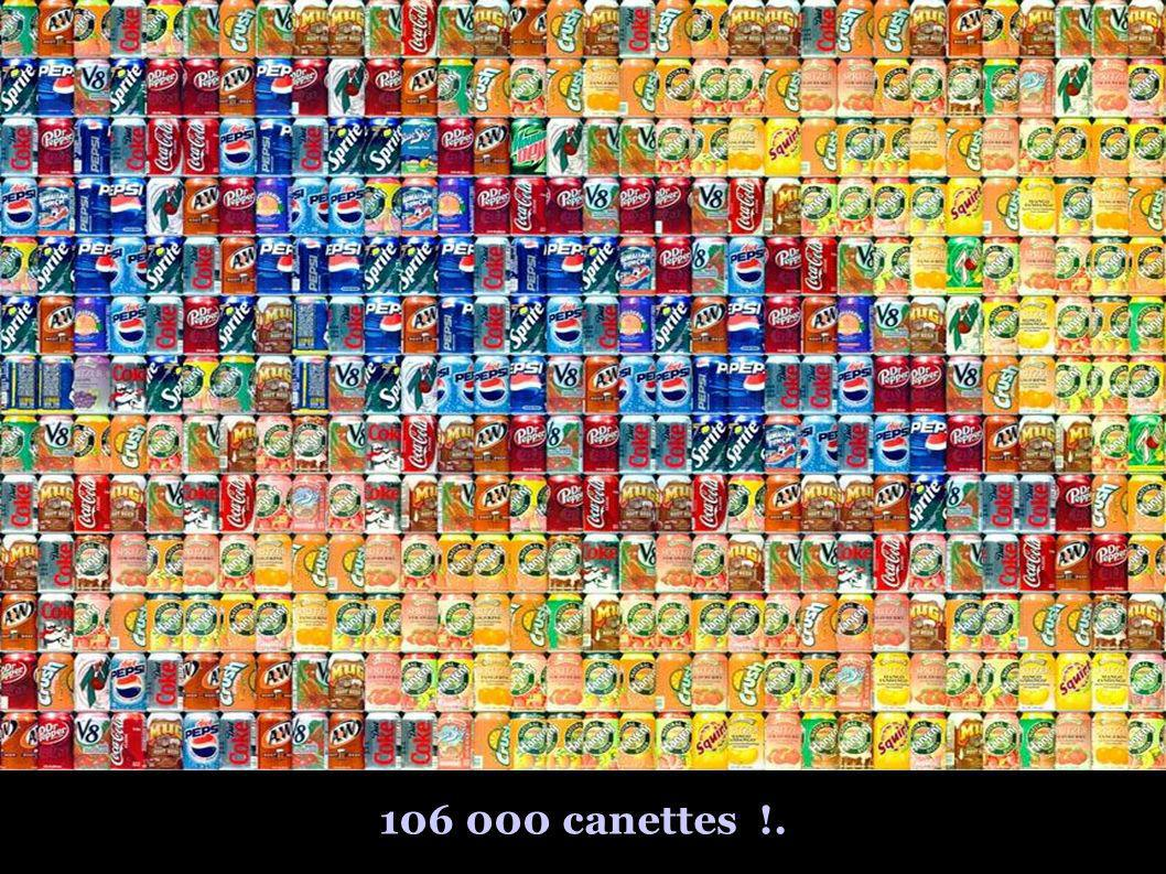 106 000 canettes !.