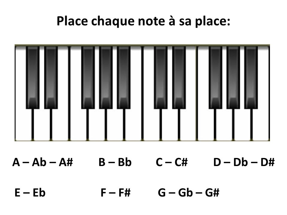 Place chaque note à sa place: A – Ab – A# B – Bb C – C# D – Db – D#