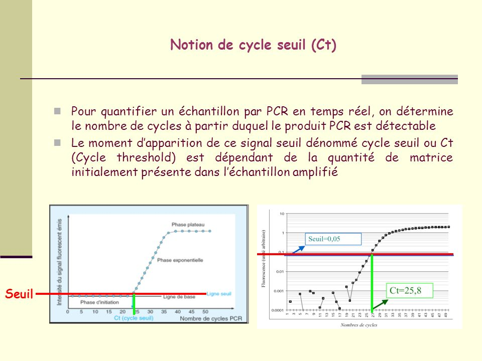 Notion de cycle seuil (Ct)