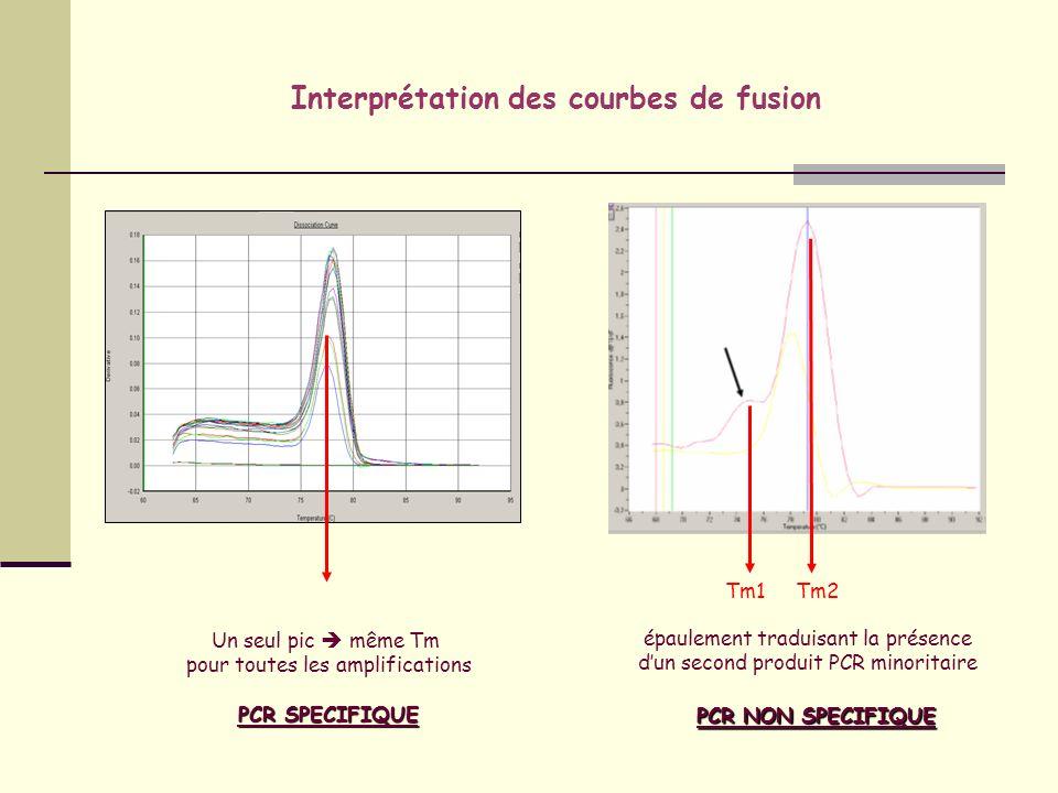 Interprétation des courbes de fusion