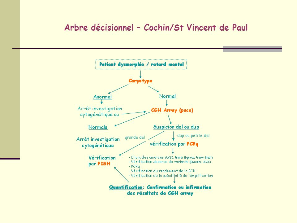 Arbre décisionnel – Cochin/St Vincent de Paul
