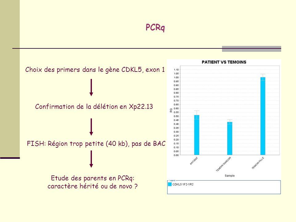 PCRq Choix des primers dans le gène CDKL5, exon 1