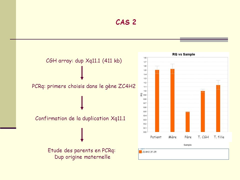 CAS 2 CGH array: dup Xq11.1 (411 kb)