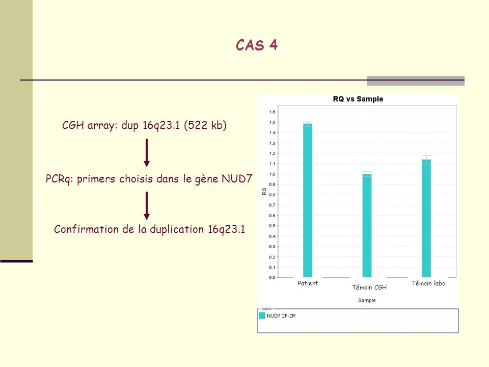 CAS 4 CGH array: dup 16q23.1 (522 kb)
