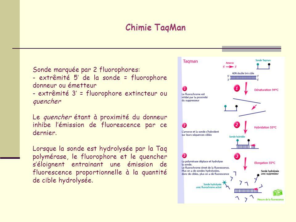 Chimie TaqMan Sonde marquée par 2 fluorophores: