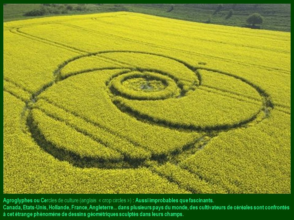 Agroglyphes ou Cercles de culture (anglais: « crop circles ») : Aussi improbables que fascinants.