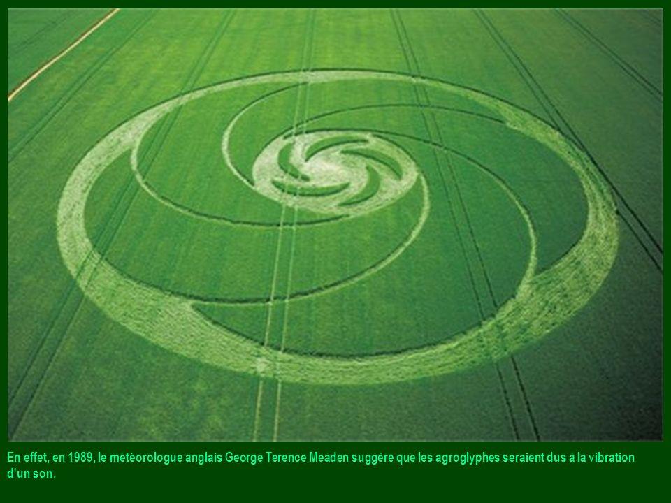 En effet, en 1989, le météorologue anglais George Terence Meaden suggère que les agroglyphes seraient dus à la vibration