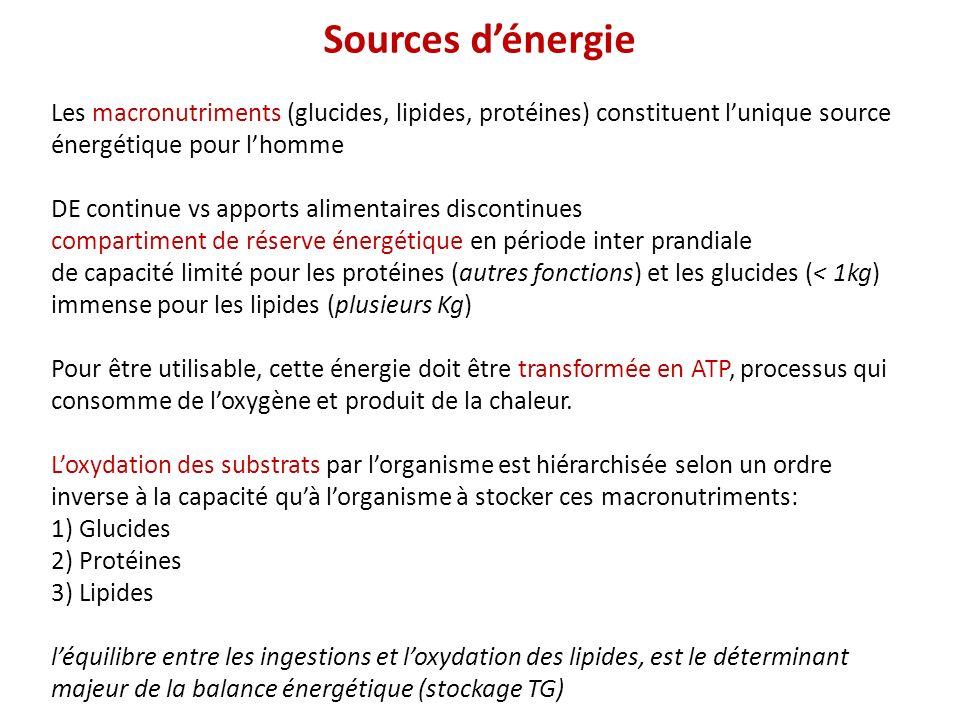 Sources d'énergie Les macronutriments (glucides, lipides, protéines) constituent l'unique source énergétique pour l'homme.