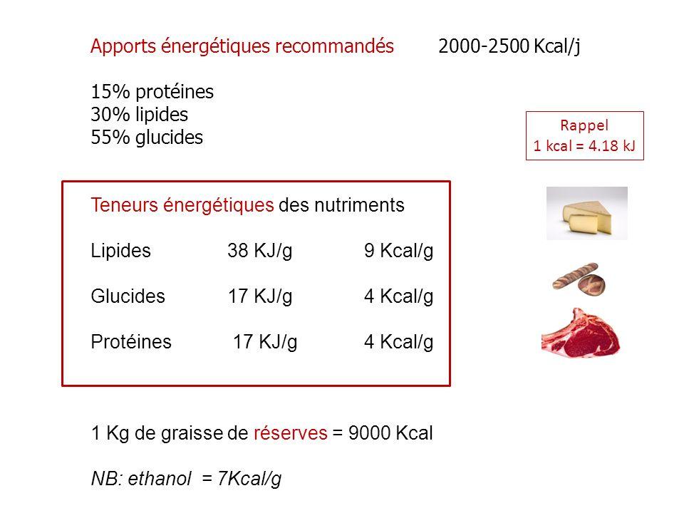 Apports énergétiques recommandés 2000-2500 Kcal/j 15% protéines